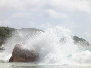 Titelbild Seekrankheit