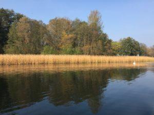 Herbst am Scharmützelsee